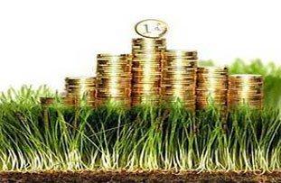 Бюджет Нижнего Тагила-2015 может сократиться на 500 млн рублей