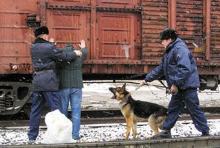 На Смычке поймали похитителя деталей грузовых вагонов