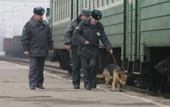Железнодорожные полицейские задержали мужчину с ломом черных металлов