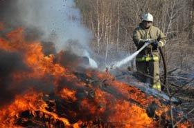 В Нижнем Тагиле отмечен всплеск возгораний сухой травы - 11 случаев только за 2 апреля