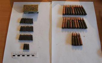 Тагильчанка нашла в мусорном баке более сотни патронов