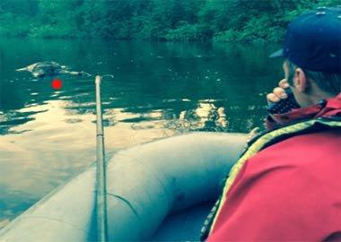 Из реки Тагил в районе Медведь-Камня достали тело утопленника