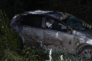 В районе села Покровское легковой автомобиль столкнулся с лошадью