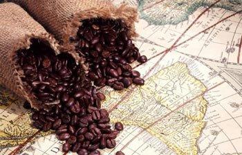 В субботу в парке Бондина пройдет первый фестиваль кофе, организаторы приготовят более тонны бодрящего напитка