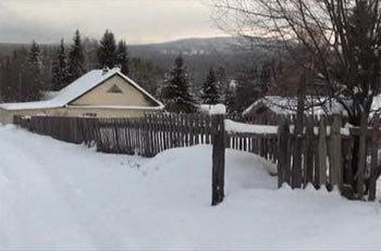 Житель Вагонки задержан за кражи из садовых домиков