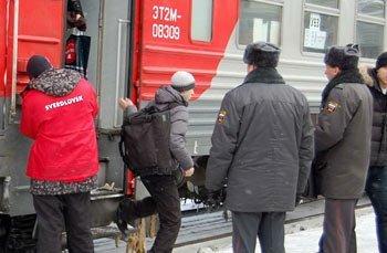 Транспортные полицейские станции Нижний Тагил задержали жителя Кушвы с пакетиком