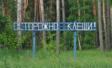 На Среднем Урале активизировались клещи