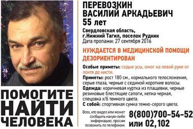 Ушел в лес и пропал Василий Перевозкин
