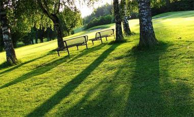 В пойме реки Тагил появится новый парк площадью 8 га