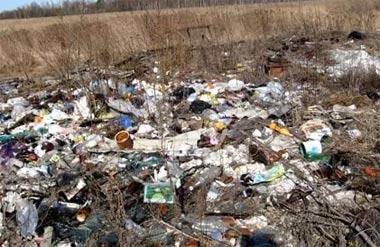 Жители пригорода Нижнего Тагила сваливают мусор на обочины дорог