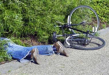 Упавшая ветка покалечила подростка-велосипедиста