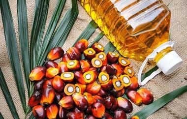 В Исландии запрещают пальмовое масло
