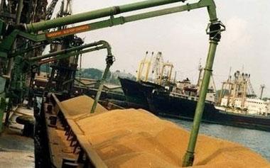 Урожай зерновых в России в 2018 году будет ниже прошлогоднего