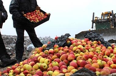В Нижнем Тагиле изъяли и уничтожили около 200 кг груш и яблок